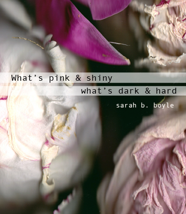 What's pink & shiny / what's dark & hard (Sarah B. Boyle), front cover (Nicci Mechler)