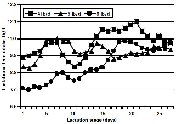 Nutritional Aspects of Sow Longevity - Pork Information Gateway
