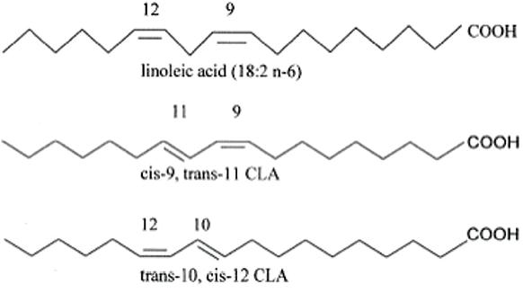 Afbeeldingsresultaat voor CLA structure