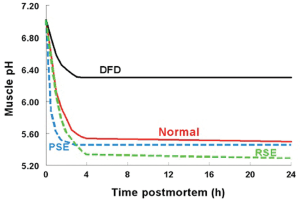 Figure 1. The association between postmortem pH decline and pork quality. Along with the typical pH decline (Normal), the three basic quality defects are presented, including: pale, soft and exudative (PSE) pork, dark, firm and dry (DFD), and red, soft and exudative (RSE) pork.