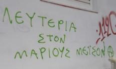 free-Marius_Kato-Petralona