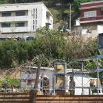 Z Solo a été dépossédé de tous ses biens par RANARISON Tsilavo 66 - La Cour d'appel d'Antananarivo viole l'article 2 de la loi sur la concurrence ainsi que l'article 6 du code de de la procédure Pénale et l'article 181 de la loi sur les sociétés commerciales pour faire condamner Solo à 2 ans de prison avec sursis et 428.492 euros d'intérêts civils