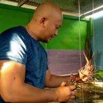 Pengusaha Asal Morotai ini Sukses Jual Lobster Hingga Luar Negeri Berkat KUR