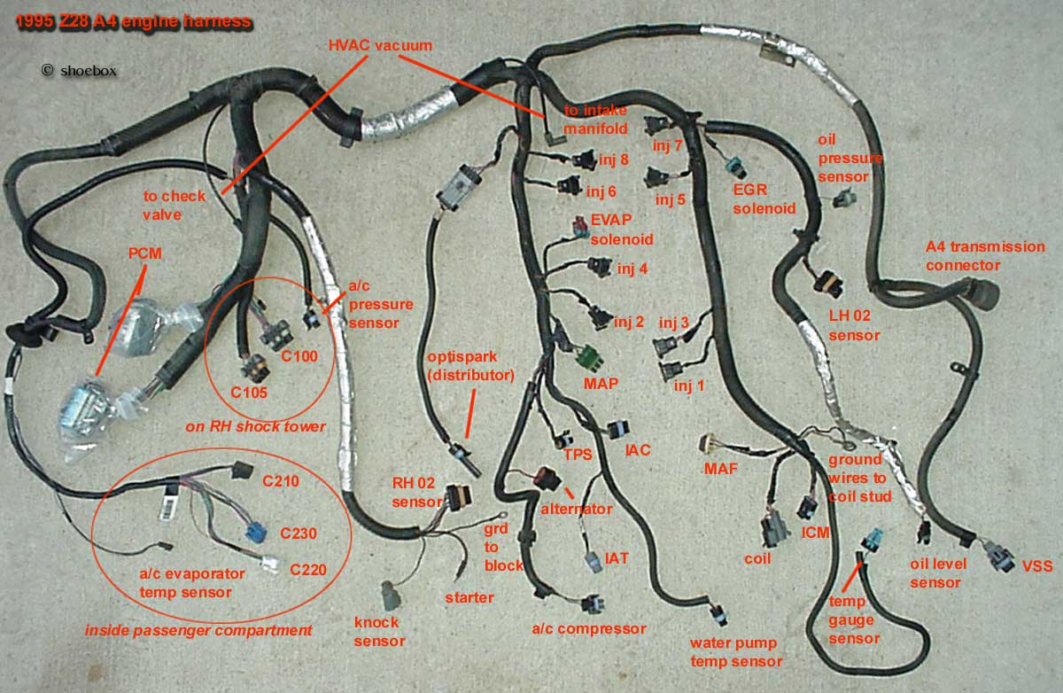 chevy wiring harness diagram emg 40hz tbi get free image about