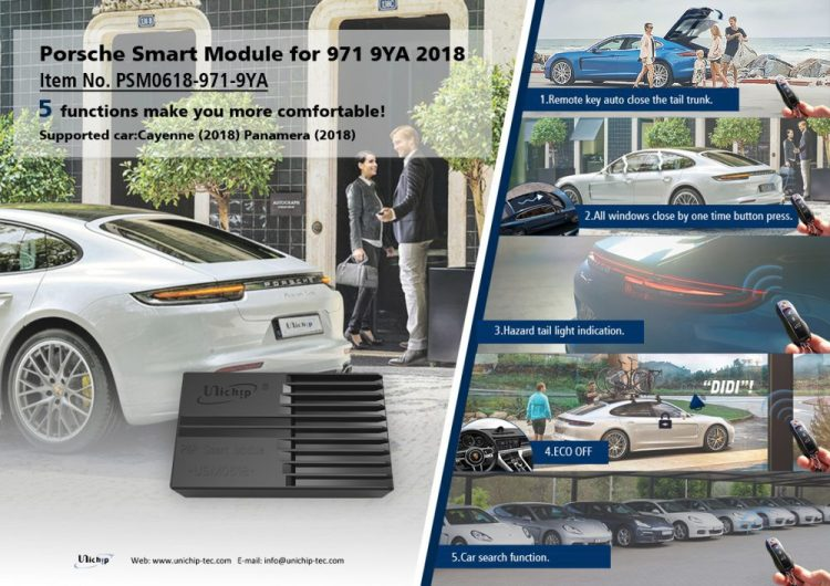 PSM Porsche Smart Module