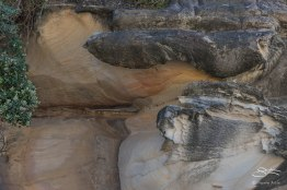 Rock at Tamarama Beach