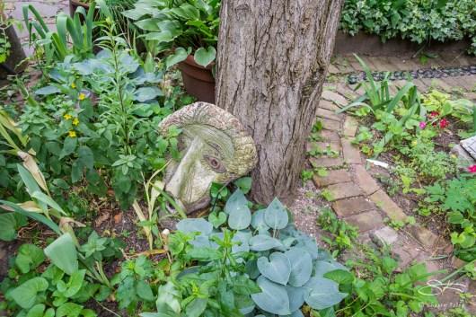 20110604 Dias Y Flores Garden 10