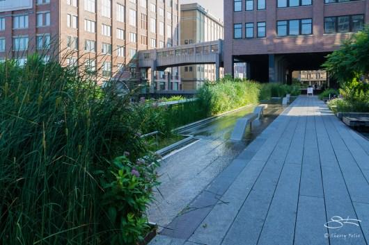 2011-07-09 High Line 29