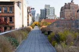 20111111 High Line 31.NEF