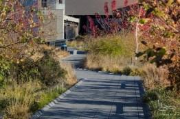 2011-11-22 High Line 05