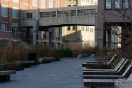 2011-11-22 High Line 15