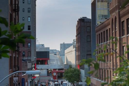 2014-08-20 High Line 05