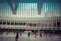 Oculus, WTC Transportation Hub, NYC 6/4/2016