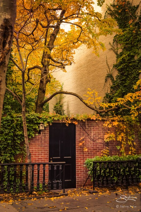 Secret Garden on West 4th Street 11/6/2016
