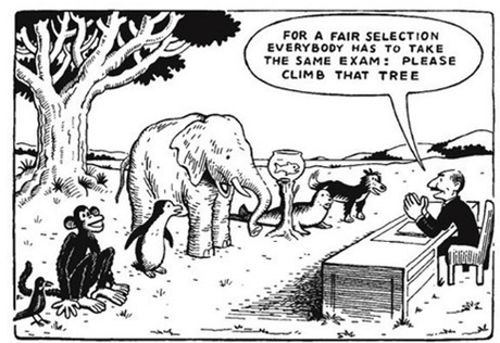 How well do standardized tests measure student abilities