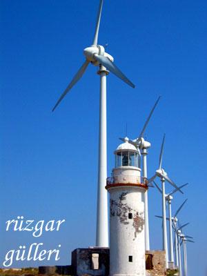 ruzgar_gulu