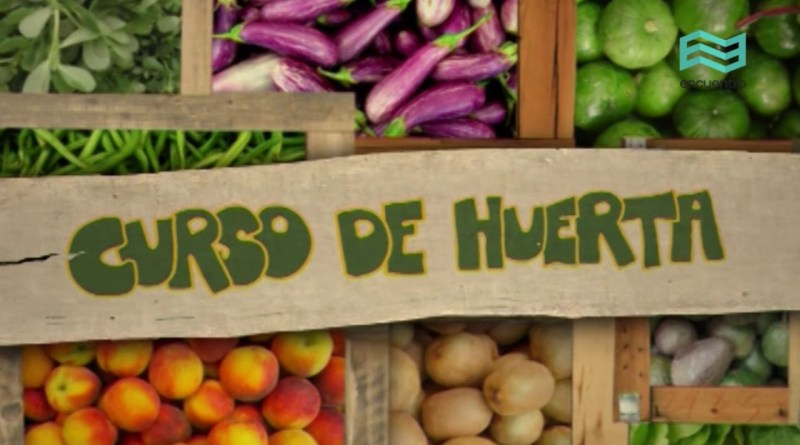 Curso online gratuito: ¨La huerta orgánica¨
