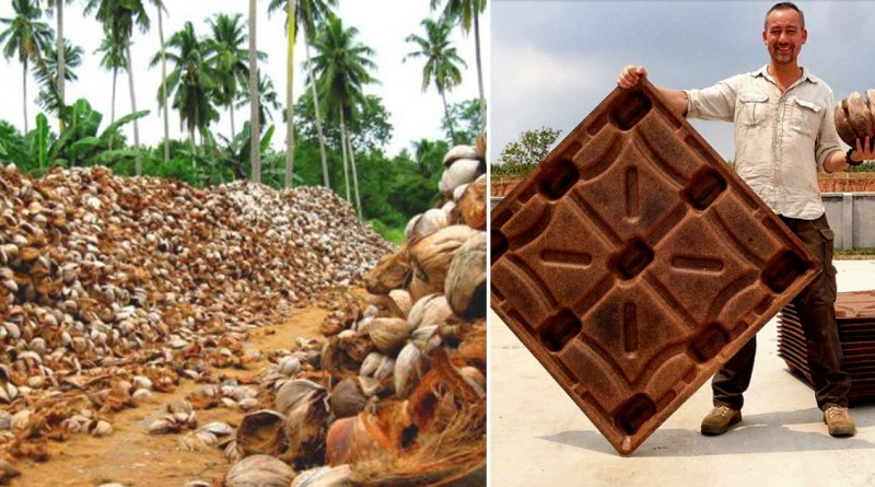 Estos pallets de coco salvan unos 200 millones de árboles al año.