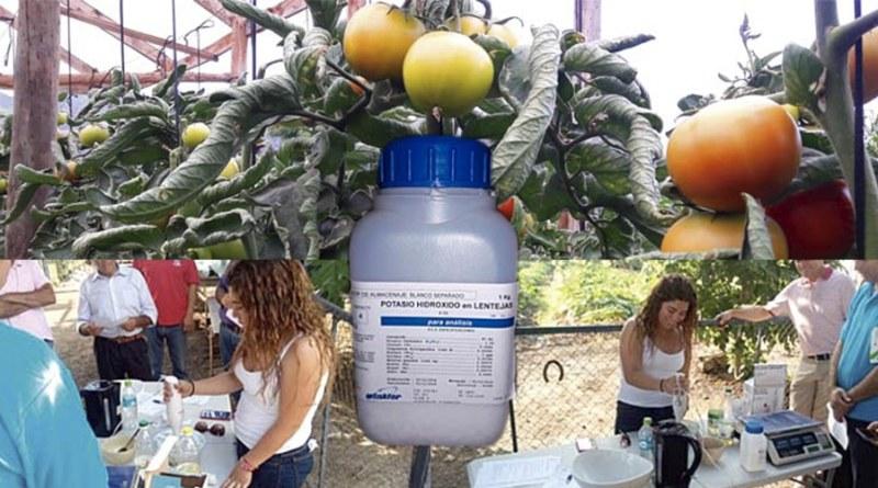 Cómo preparar Jabón Potásico, una alternativa ecológica para el control de Mosca Blanca y otros insectos
