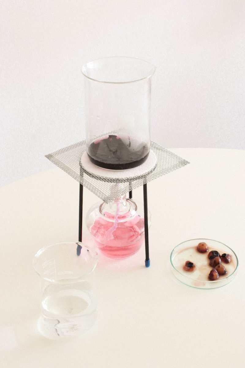 , Diseñadora crea una alternativa a los envases de plástico a base de algas