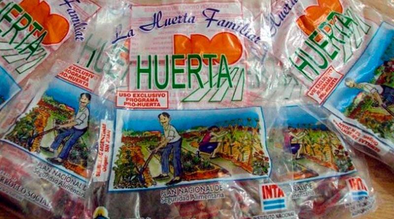 Pro Huerta: aseguran que las semillas del kit primavera – verano llegarán a mediados de octubre
