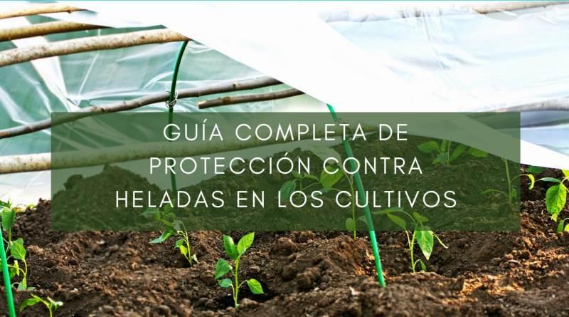, Guía completa de protección contra heladas en los cultivos