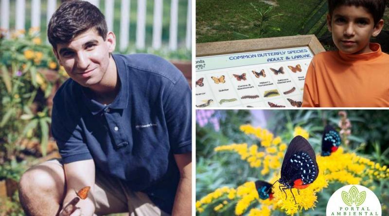 , Este Joven ha estado salvando y repoblando mariposas desde que tiene 5 años