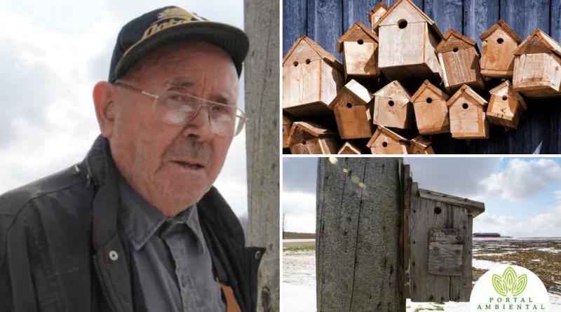 , Hombre de 91 años construyó 900 pajareras, descubre que el 99% están ocupadas