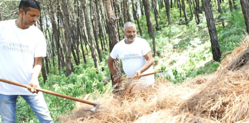 , En india utilizan la pinocha caída para crear vajilla ecológica y así evitar incendios forestales