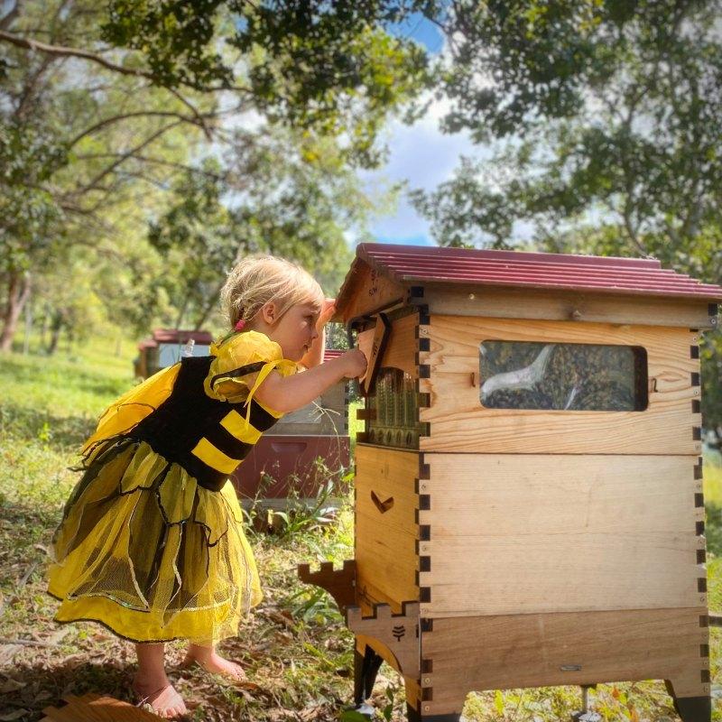 , Australianos crean colmena que permite extraer miel solo con abrir una canilla y sin molestar a las abejas