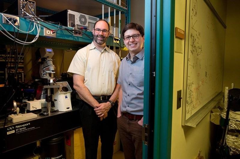 , Esta Planta biónica detecta instantáneamente metales y toxinas en el agua