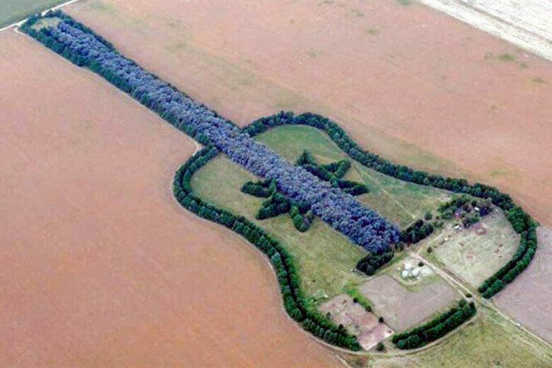 , Argentino creó un bosque en forma de guitarra con 7000 árboles en memoria de su esposa