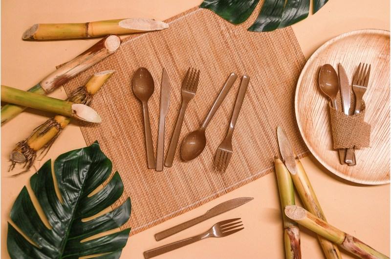 , Joven crea utensilios Biodegradables y comestibles para erradicar los plásticos
