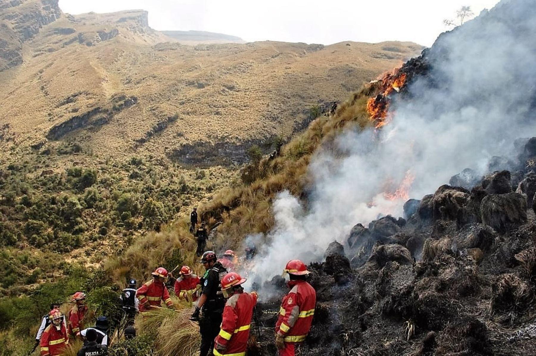 Brigadas Controlan Incendio Forestal En El Santuario