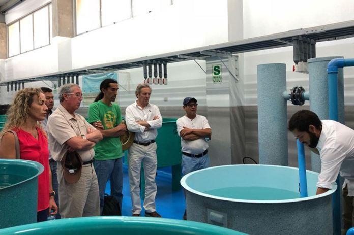 Resultado de imagen para Viceministro de Pesca y Acuicultura visitó CITE Acuícola en Talara