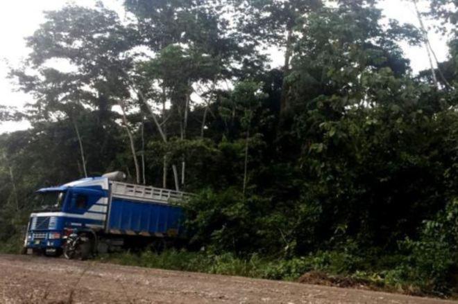 La carretera que cambió la vida a una zona remota de Madre de Dios. Foto: BBC Mundo.