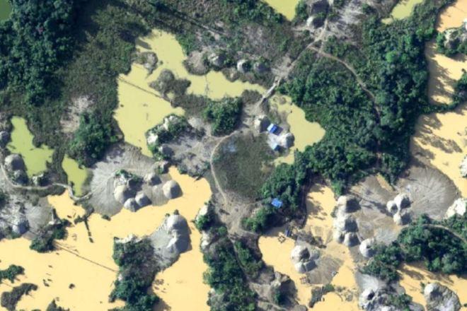 Cerca del 20% de la Amazonia desapareció en 50 años revela informe de WWF. ANDINA/Difusión