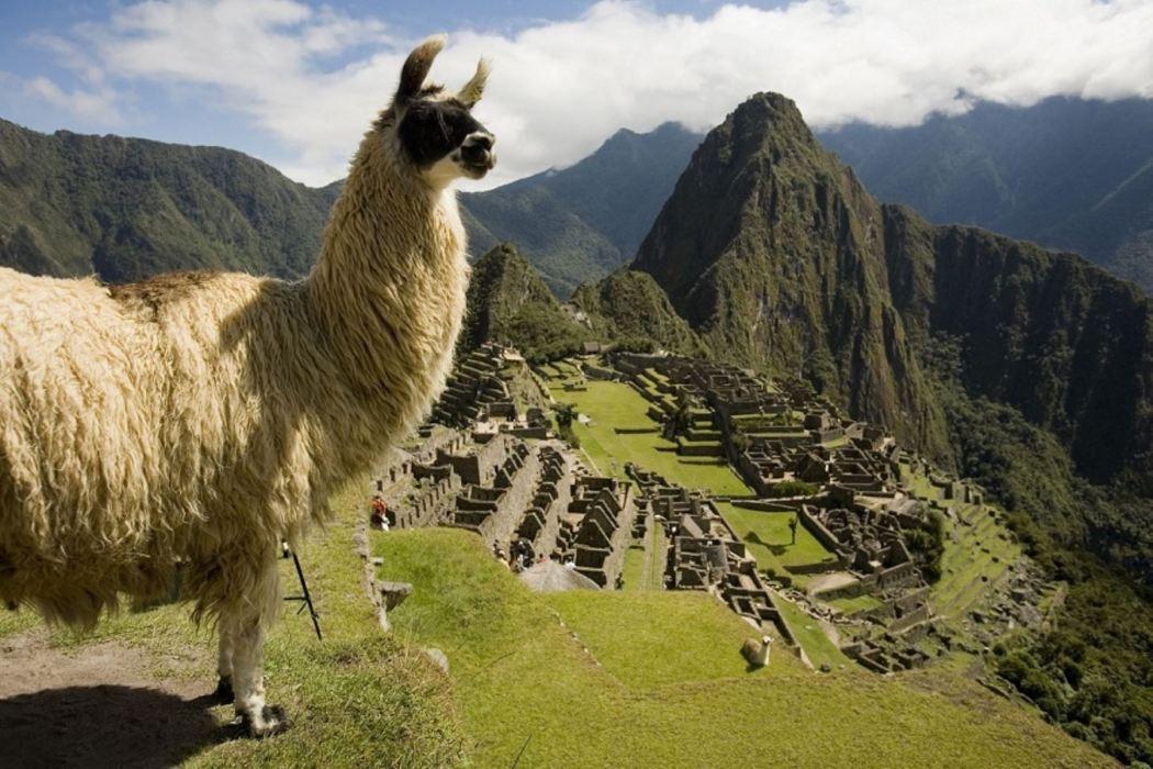 Perú obtiene tres galardones en los World Travel Awards 2019 ...