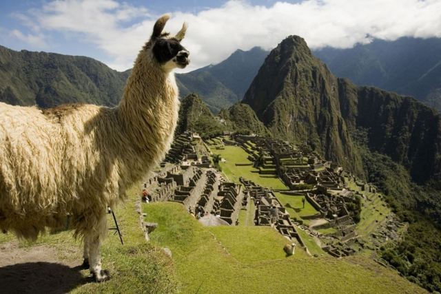 Perú obtiene tres galardones en los World Travel Awards 2019 ...