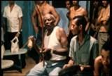 Portal Capoeira Nova Seção!!! A Capoeira Iluminada Notícias - Atualidades