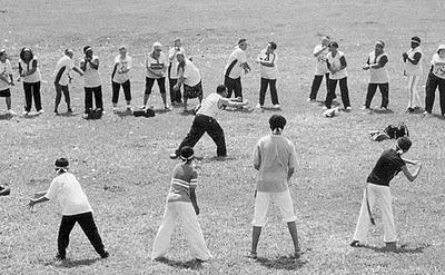 Portal Capoeira Curso capacita multiplicadores de Capoterapia para Programa Vida Saudável Eventos - Agenda