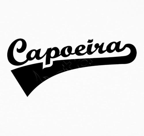 O Profissional e o papo furado Capoeira Portal Capoeira 1