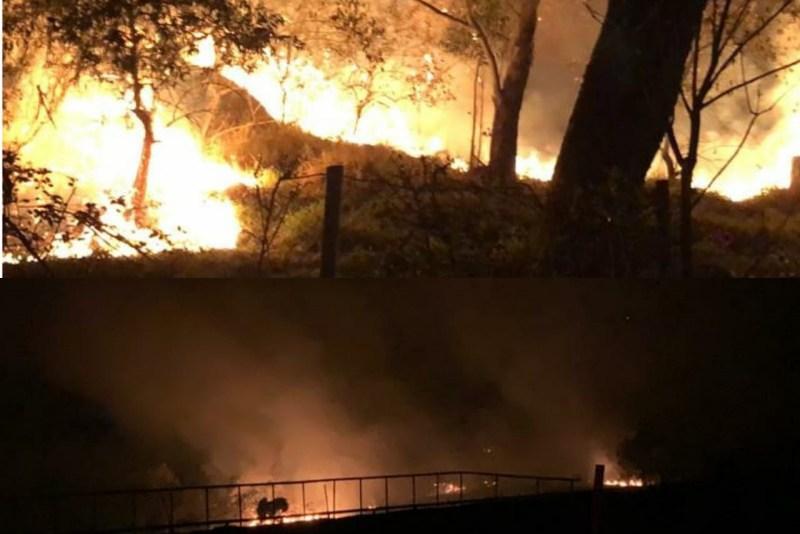 Incêndio atinge mata de Joaquim Egídio - CBN Campinas 99,1 FM