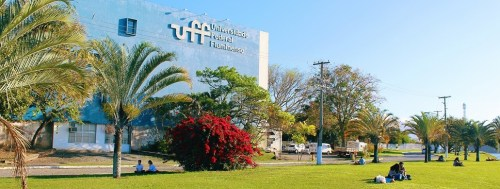 Conexão Engenharia UFF: encontros online nacionais e internacionais