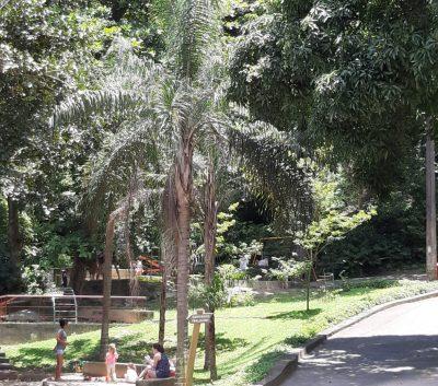 Parque da Chacrinha - 51 anos