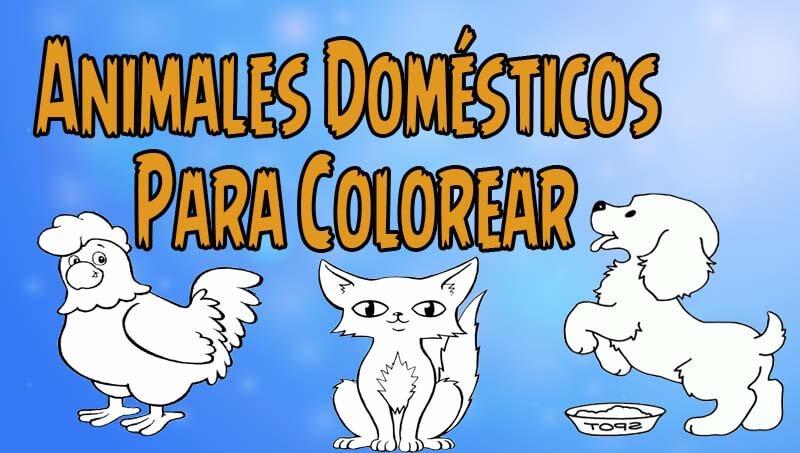 Animales domésticos Para Colorear