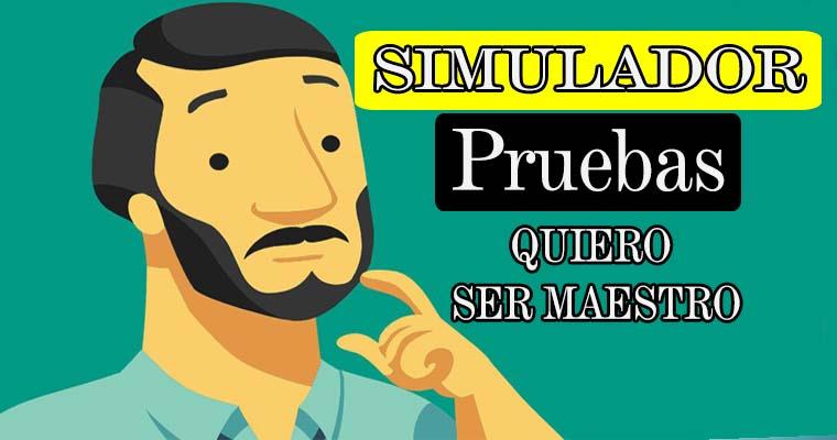 Simulador QSM : Pruebas de Razonamiento del Ministerio de Educación