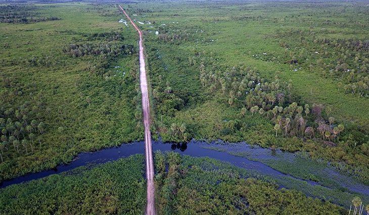 Brasil faz posicionamento estratégico na Cúpula do Clima, avalia secretário de Meio Ambiente