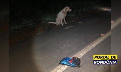 Jovem morre atropelado na BR-319 e cachorro fica ao lado do corpo até a chegada da PRF