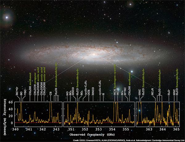 Floresta de sinais moleculares em galáxia com ativa formação de estrelas